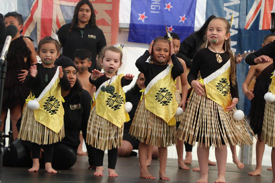 Iwi Question – Census 2018